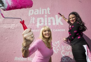 Irish Cancer Society 'Paint it Pink' campaign, to fight breast cancer, kicks off in County Offaly