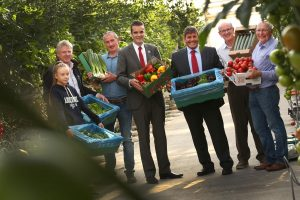 Irish Salads Market Valued At €45m At Farm Gate