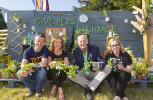 Last Chance For Offaly's Businesses To 'Give Peas A Chance'