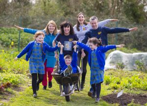 Successful Projects in Offaly awarded funding from Energia Get Ireland Growing