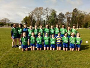 Offaly Ladies Football
