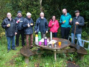 Community gets involved in pine marten conservation at Abbeyleix Bog