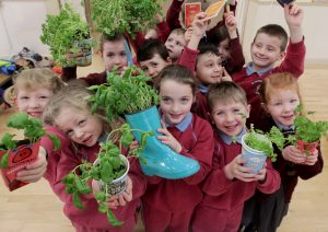 Offaly Primary Schools Invited To Apply For Free GIY Pack