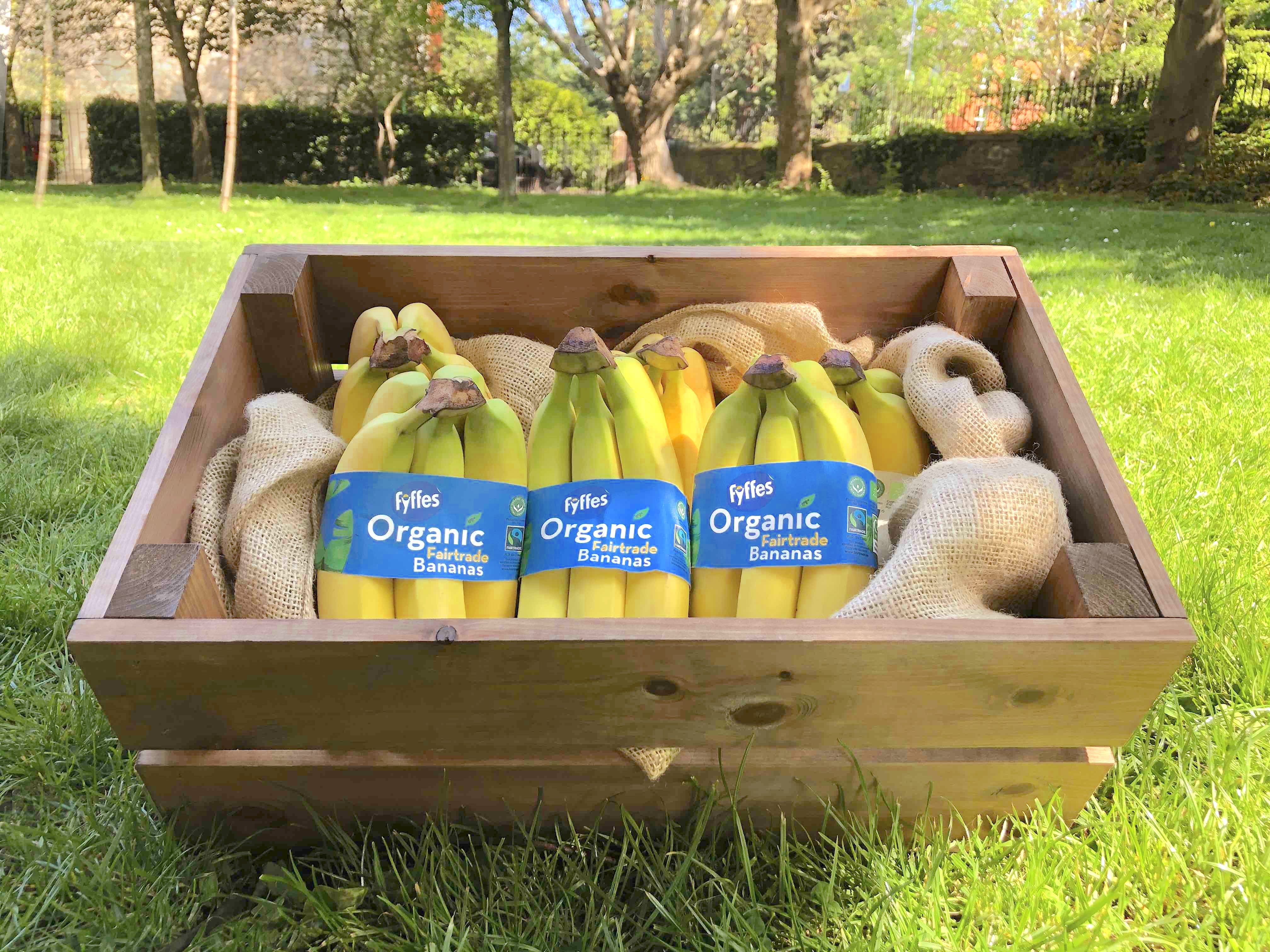Fyffes Ireland Introduces New Reduced-packaging Banana Band