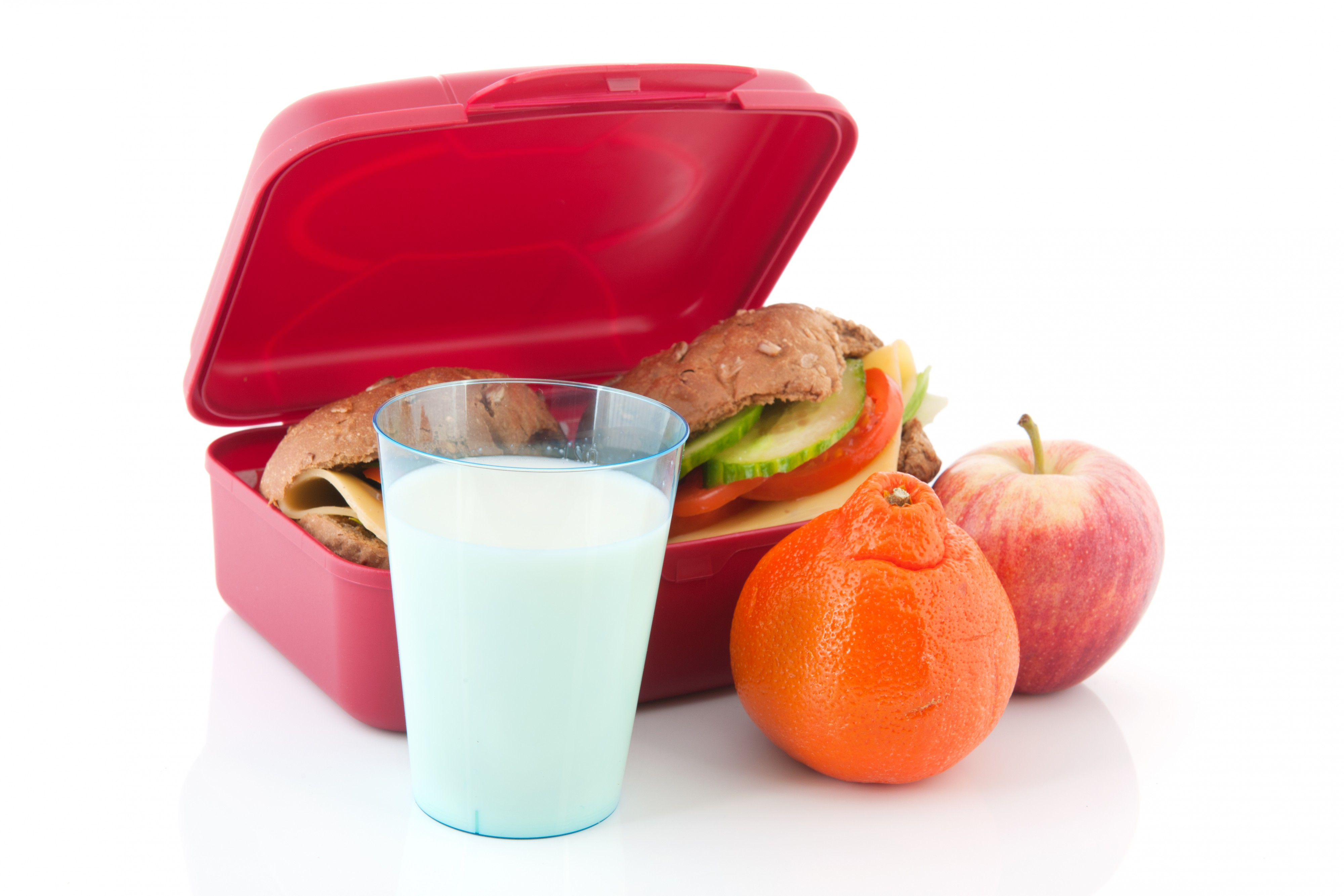 School Lunchboxes Made Easy! Top Tips to Start the Year Well