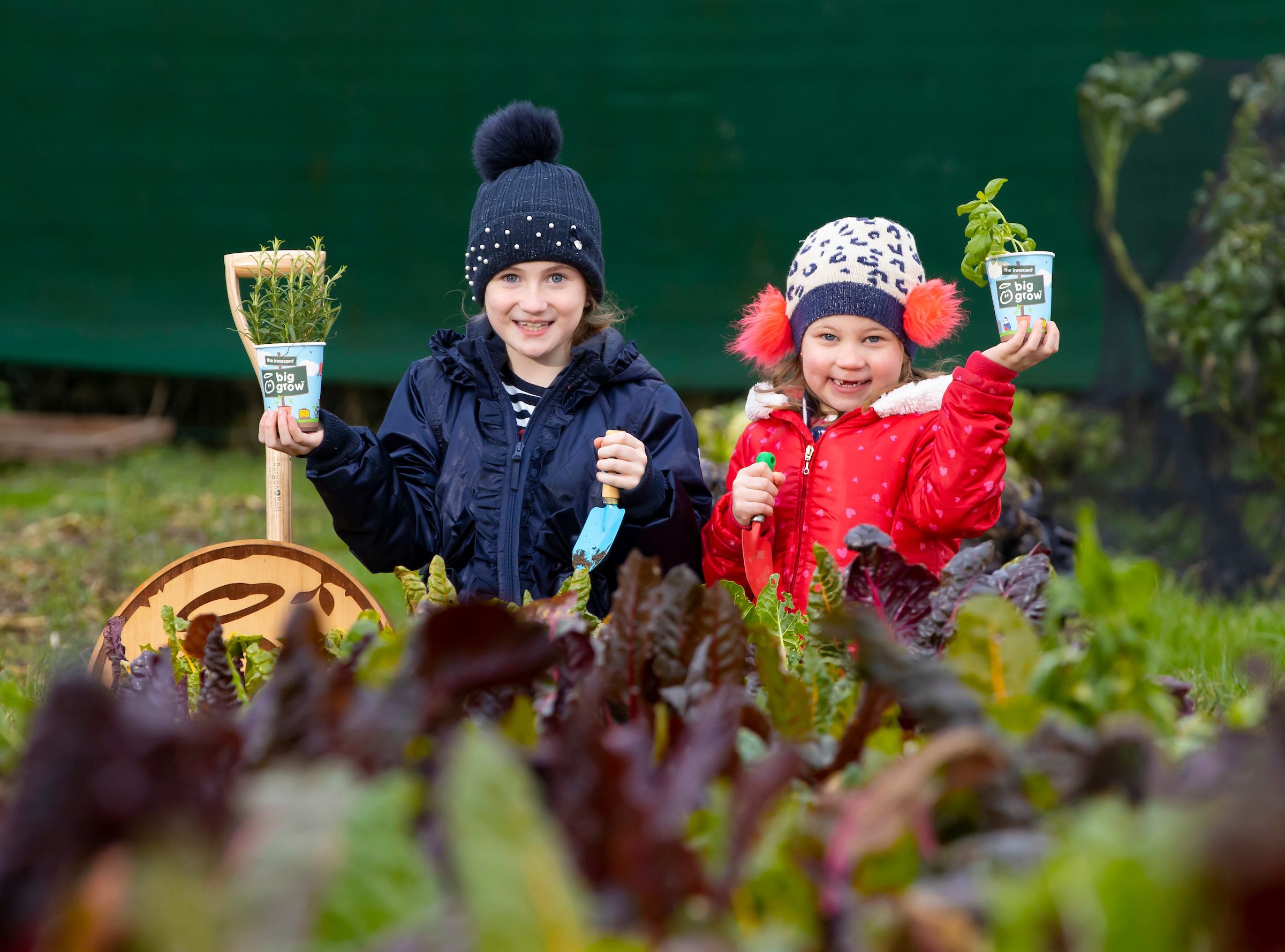 Registration for free Grow-Kits from The Big Grow 2021 is now open for Primary School Teachers