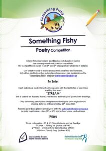 Inland Fisheries Ireland fishing for young poets in Tipperary