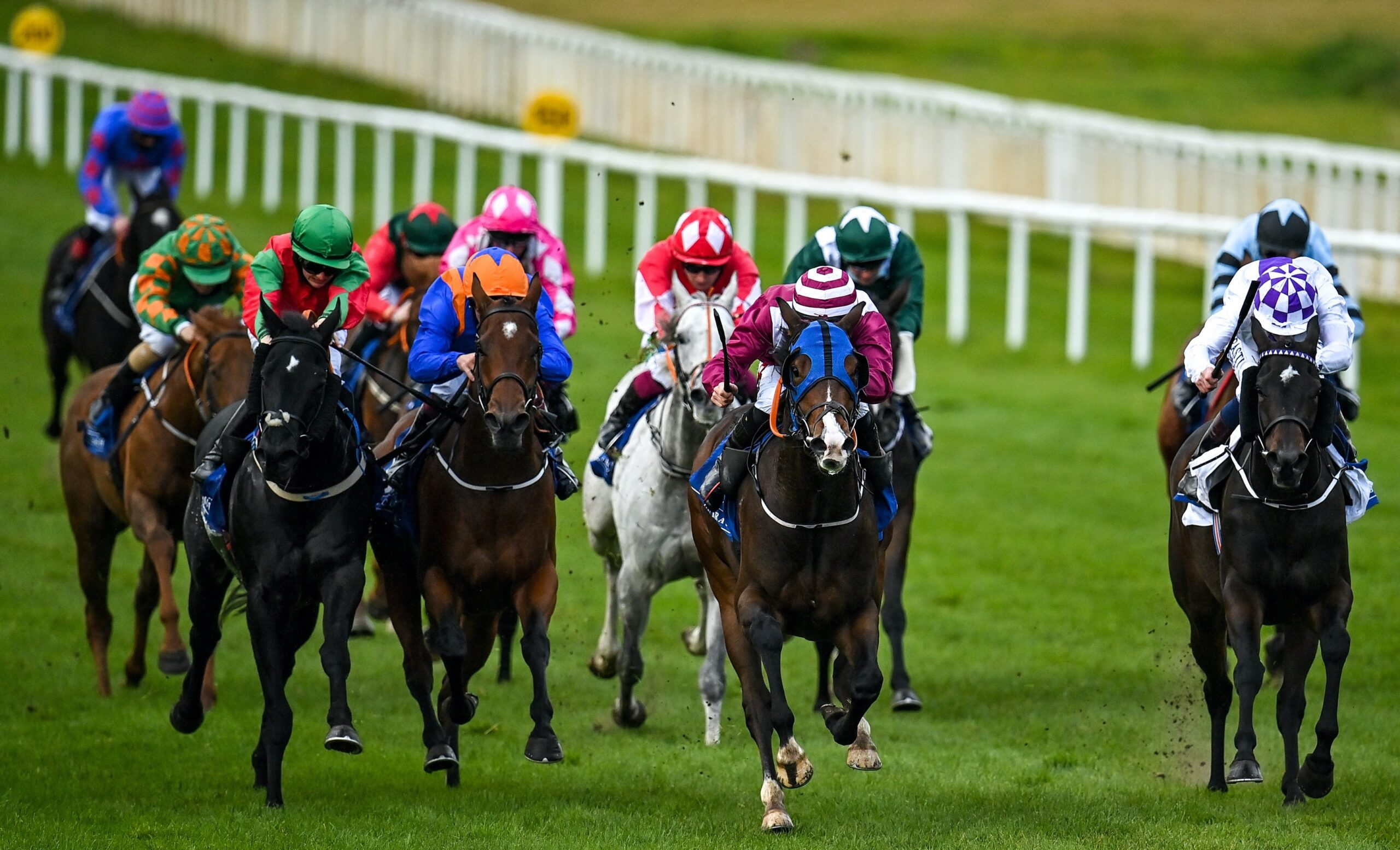 Seven weekends of horseracing on TG4 in March and April